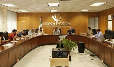 Recibe Conapesca recomendaciones y apoyo solidario de armadores para obtener la recertificación del camarón mexicano de altamar