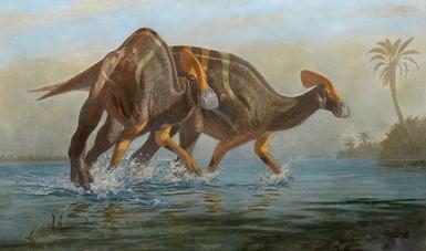 Imagen: Hadrosaurio con paleoambiente. Foto. Marco A Pineda.