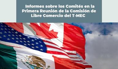 Informes sobre los Comités en la Primera Reunión de la Comisión de Libre Comercio del T-MEC