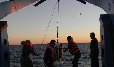 Actividades de investigación de nuestros mares