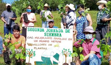 Segunda Jornada Nacional de Siembra en Veracruz