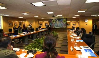 Reunión del Consejo Científico-Cultural en el marco del programa de acompañamiento para el desarrollo sostenible en la ruta del Tren Maya.
