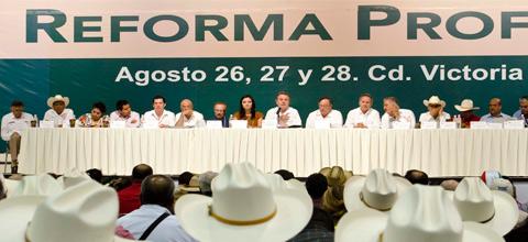 El Secretario de Energía, Licenciado Pedro Joaquín Coldwell, participó en el Congreso Nacional Extraordinario 2013 de la CNC.