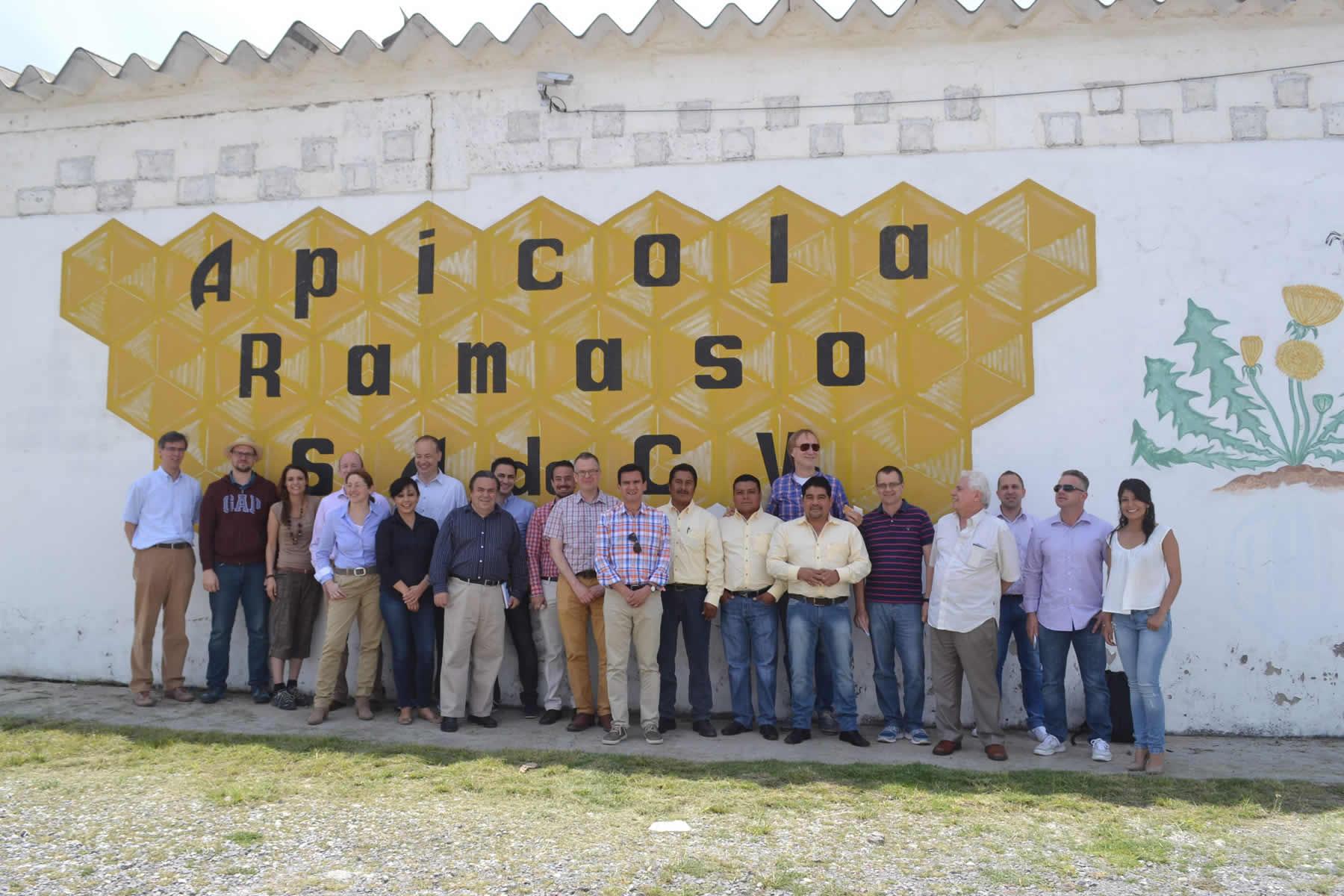 Prevén aumento de compras de miel mexicana de empresas europeas