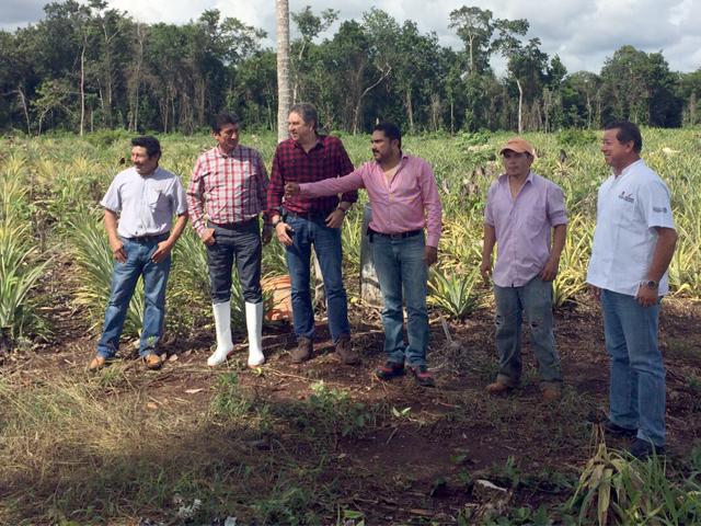 Recorrido por diversas zonas del estado de Quintana Roo.