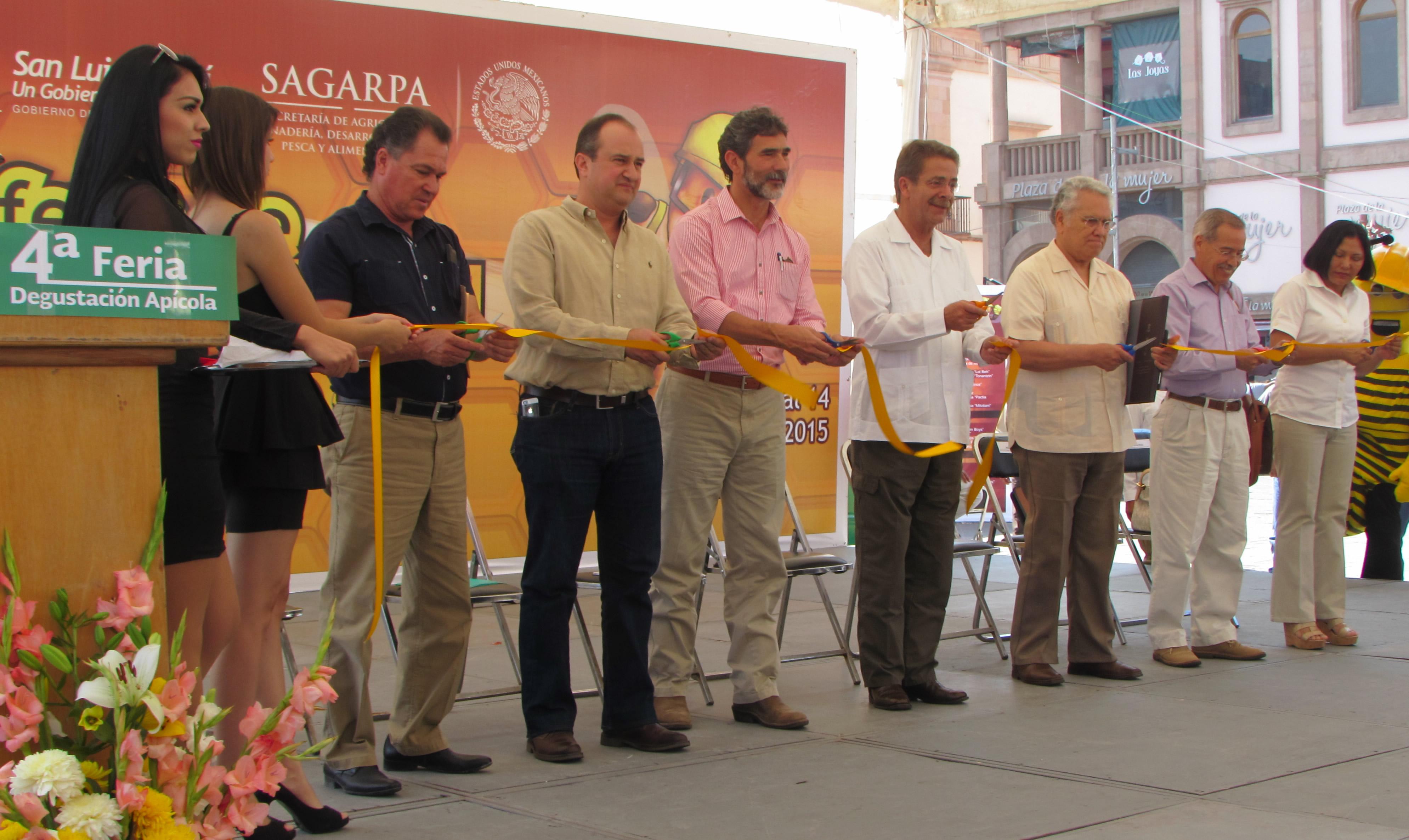 La SAGARPA, en coordinación  con el gobierno de San Luis Potosí y el Comité Estatal del Sistema Producto Apícola, lleva a cabo la Cuarta Feria de Degustación Apícola los días 12, 13 y 14 de junio en la Plaza de Fundadores de esta capital.