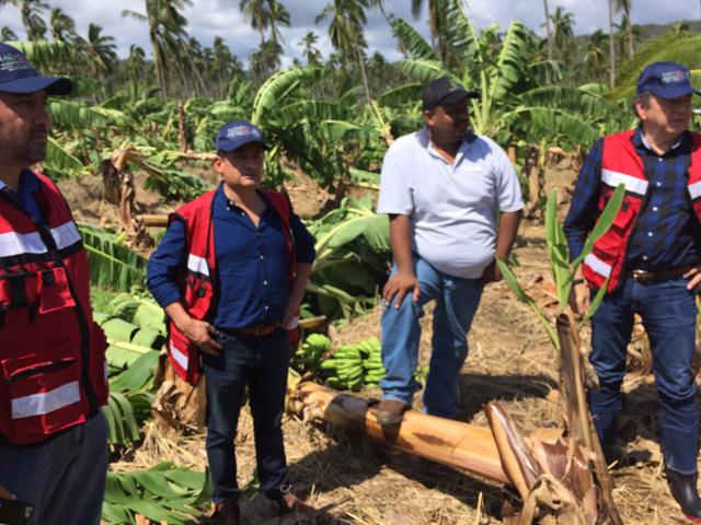 El subsecretario de Desarrollo Rural, Héctor Velasco Monroy,  supervisó los trabajos de seguimiento y monitoreo a parcelas de los municipios de Cihuatlán y Tomatlán