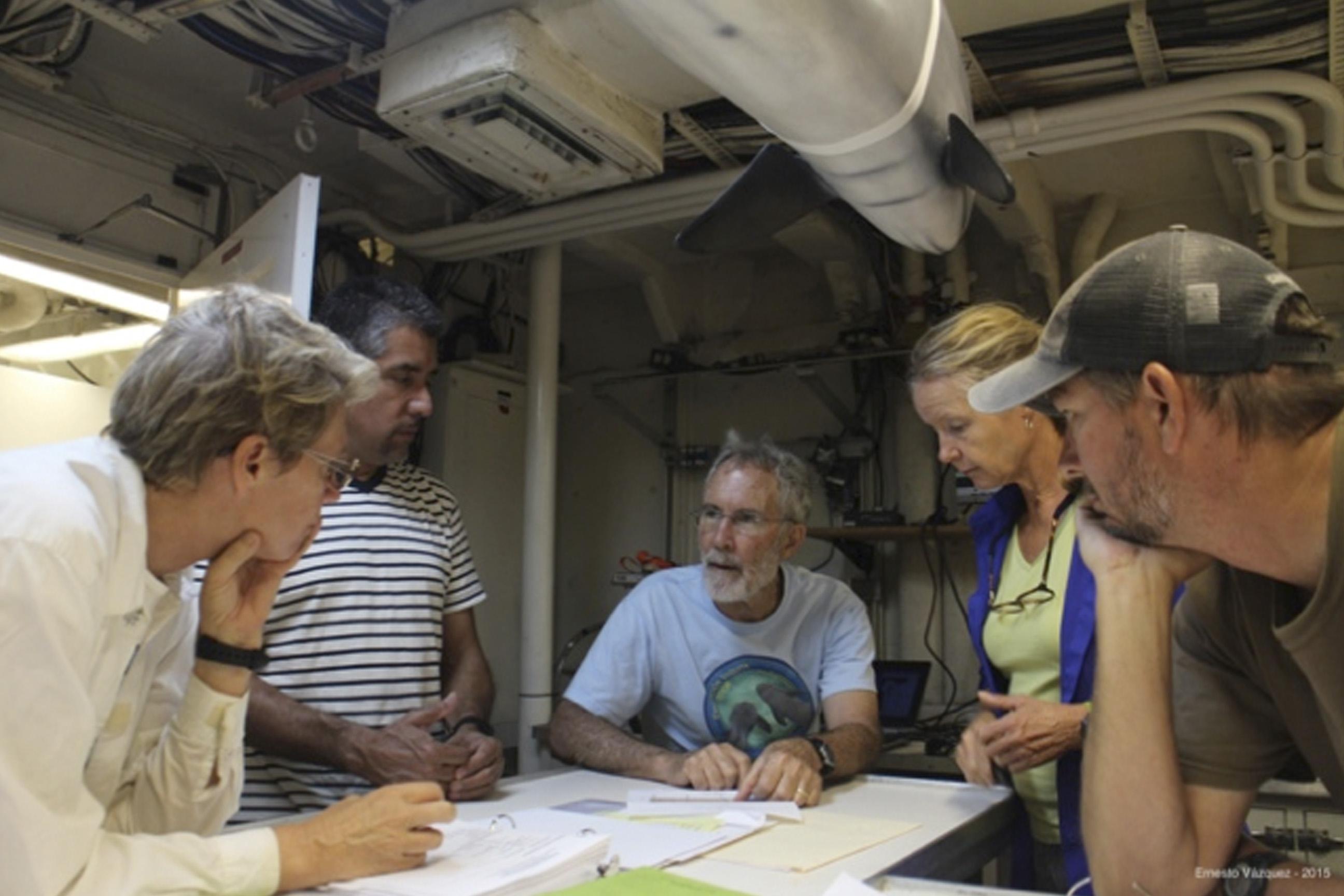 Ocean Starr reporta avistamiento de vaquita marina