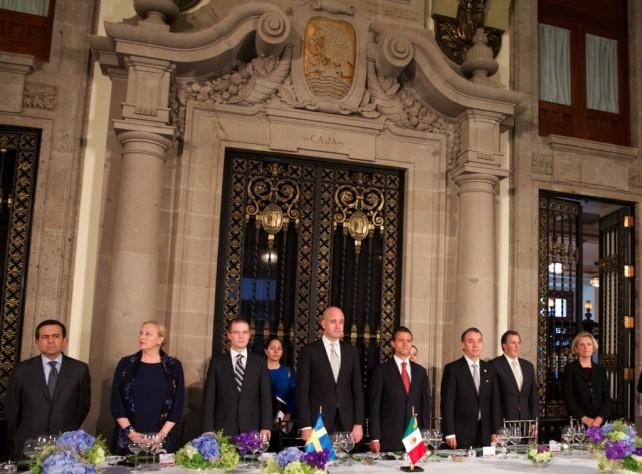 Yo también veo una necesidad de fortalecer y desarrollar los vínculos entre México y la Unión Europea. México es un actor político en la arena global muy importante en el G20, obviamente, y en la OCDE.