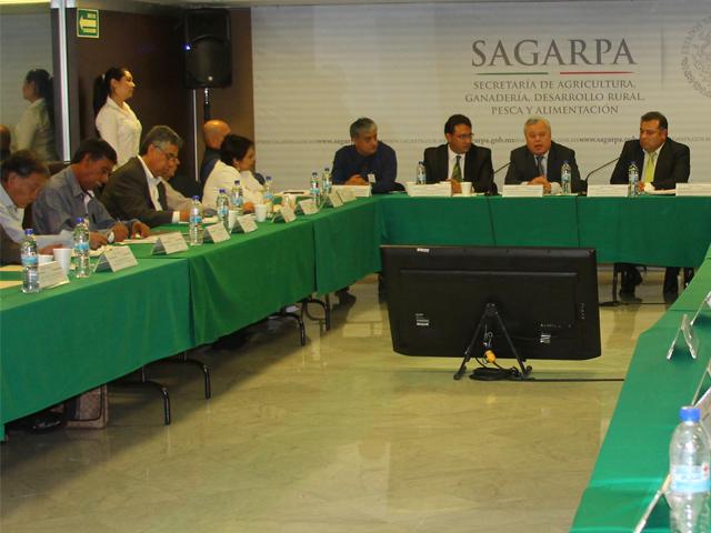 Por instrucción del secretario José Calzada Rovirosa se revisan Reglas de Operación para facilitar el acceso a los incentivos productivos.