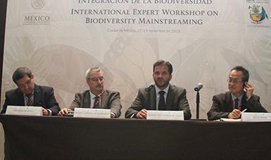 Inauguración de Taller Internacional de Expertos sobre Integración de la Biodiversidad.