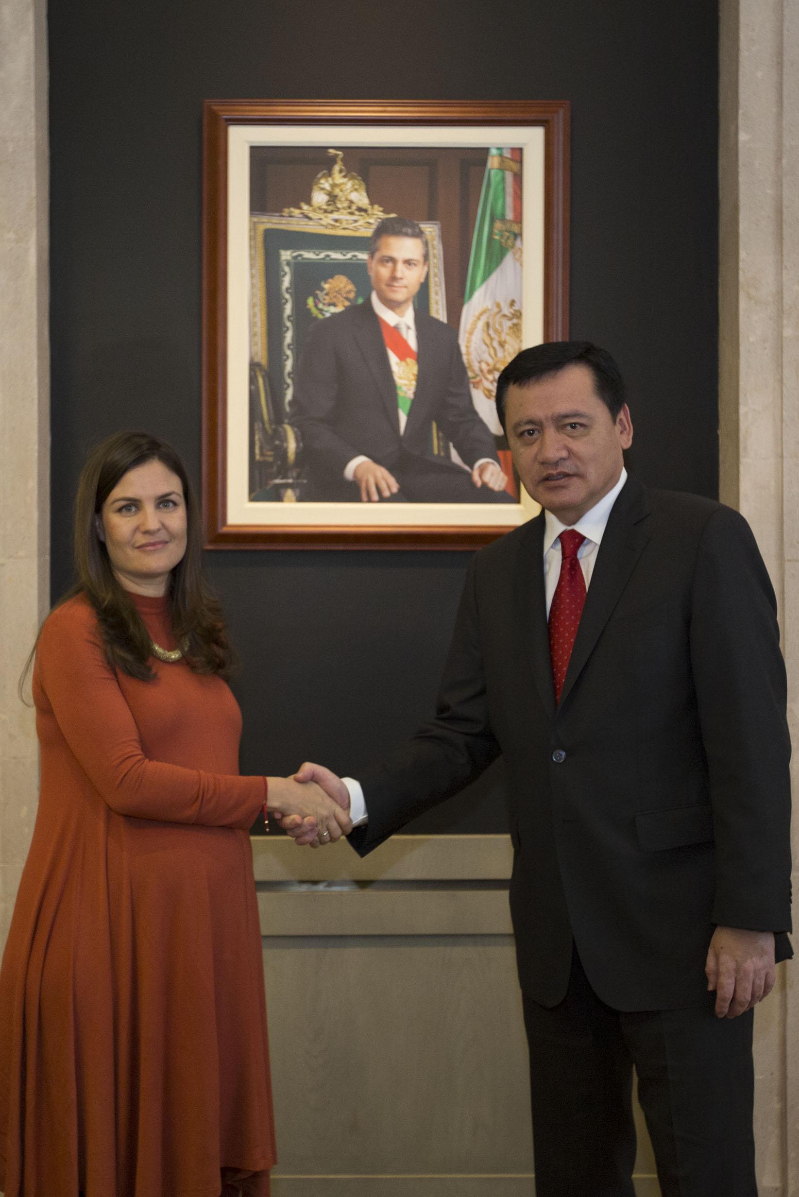 El Secretario de Gobernación, Miguel Ángel Osorio Chong, nombró a Alexandra Haas como Presidenta del Consejo Nacional para Prevenir la Discriminación.
