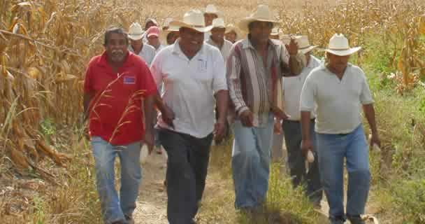 Inicia SAGARPA levantamiento de censo de productores afectados por contingencias climatológicas