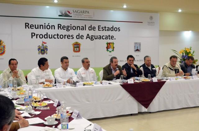 Fortalecen diversificación de mercados y producción de calidad del aguacate mexicano
