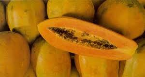 Preparan productores de papaya incursión del fruto mexicano a Europa