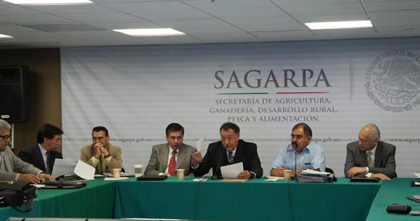 Consejo Mexicano para el Desarrollo Rural Sustentable