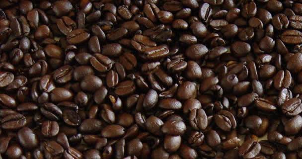 Pone en marcha SAGARPA esquema de coberturas para café