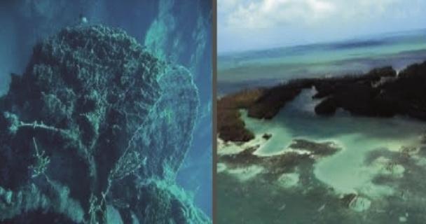 Establece SAGARPA una red de zonas de refugio pesquero en las áreas de Banco Chinchorro y Punta Herrero, Quintana Roo