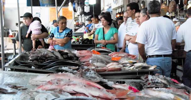 Se estima la comercialización de hasta 250 mil toneladas de pescados y mariscos