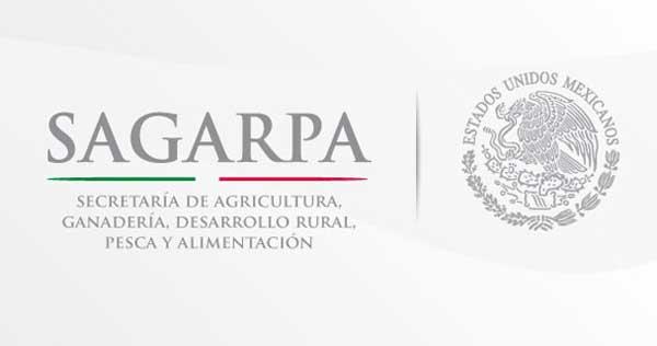 Colaboran México y Cuba en proyectos de transferencia de tecnología y control sanitario