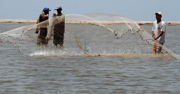 desarrollo rural sustentable de Yucatán