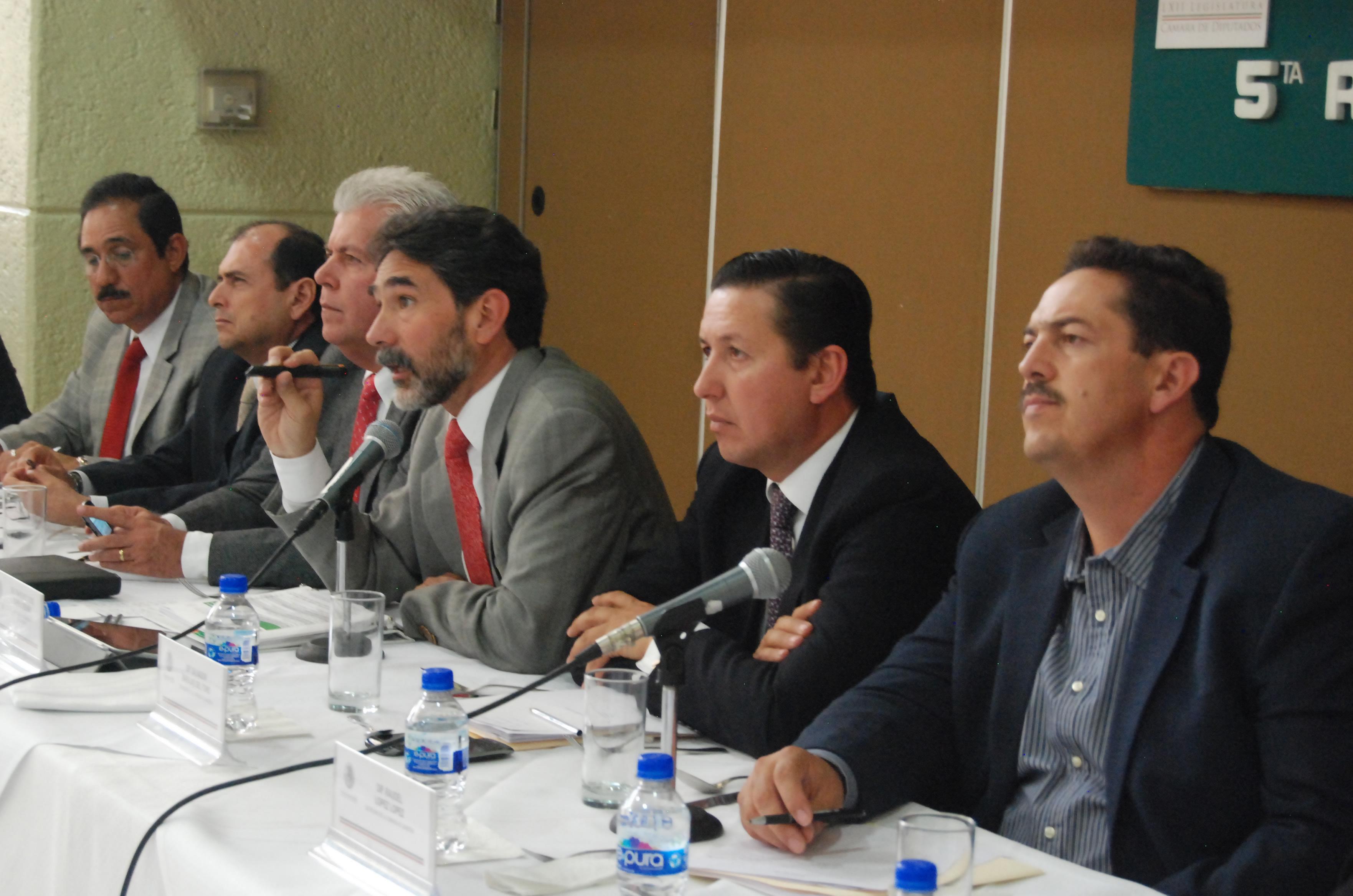 Como parte de los apoyos al sector pecuario mexicano, el gobierno federal desarrolla en el país cinco acciones específicas para estimular su productividad sustentable: Coordinación General de Ganadería.