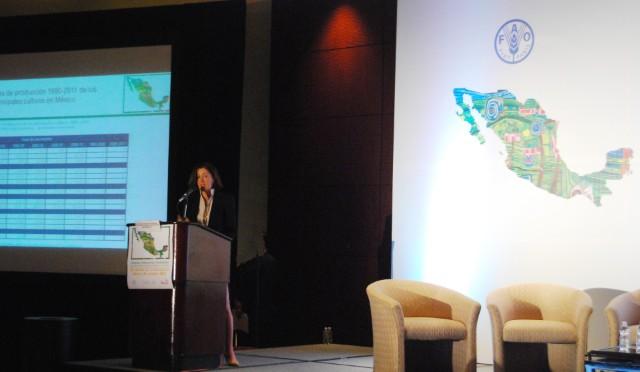 Reconoce FAO acciones para lograr seguridad alimentaria en México