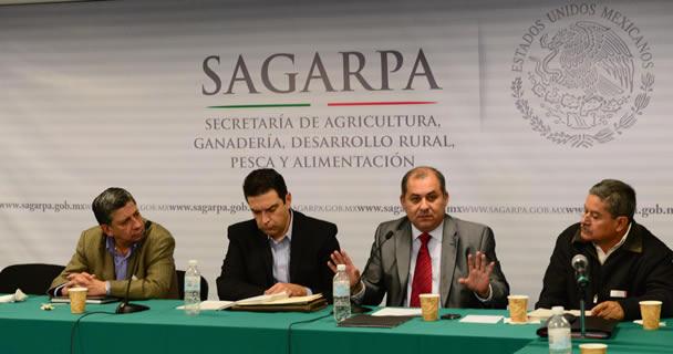 Los cafeticultores se pronunciaron por integrar un programa de fomento a la agricultura que cuente con Reglas de Operación.