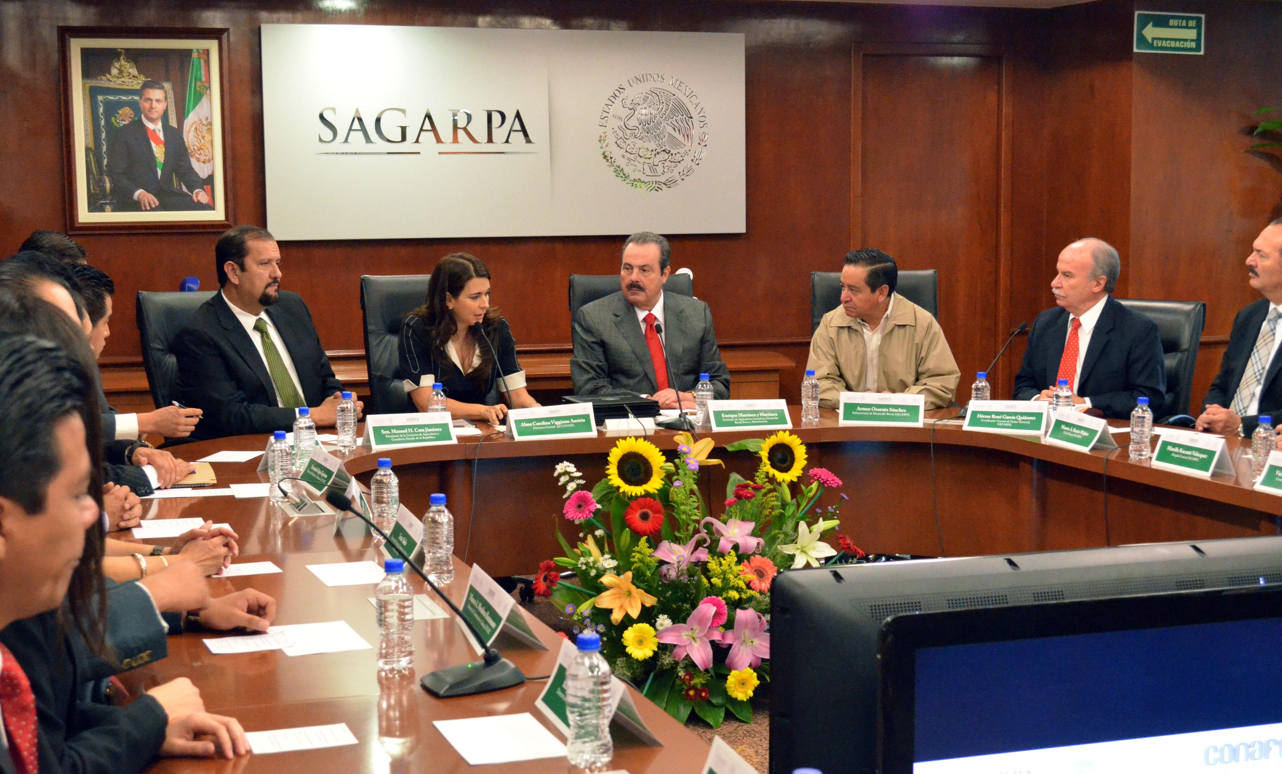En una primera etapa se crearán huertos escolares en 252 comunidades de alta marginación de los estados de Chiapas, Guerrero, Hidalgo y Oaxaca.
