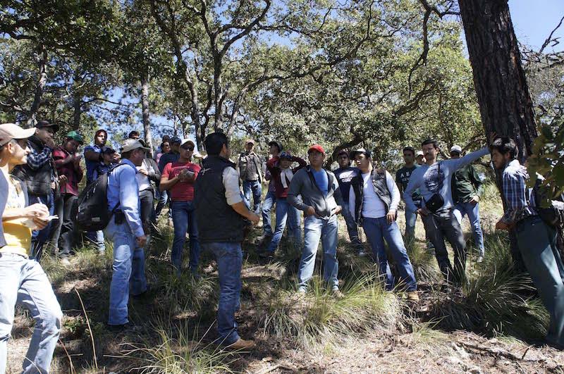 La conafor fortalece la vinculaci n con el sector for Viveros forestales conafor