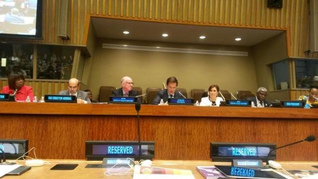 """La Secretaria de Desarrollo Social mexicana participó hoy en la Reunión Paralela de Alto Nivel de la Asamblea General de la ONU: """"Alcanzando el Reto del Hambre Cero""""."""