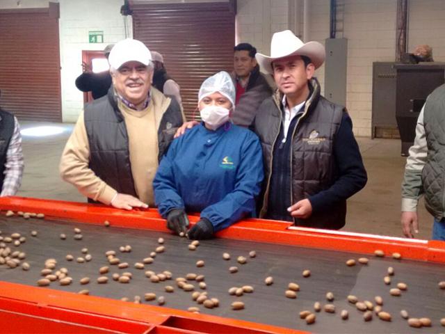 Gira de trabajo del subsecretario Ricardo Aguilar Castillo por el estado de Chihuahua para supervisar proyecto de a nuez pecanera.
