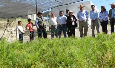 La Semarnat continuará sumando esfuerzos mediante el PET,  PROVICOM y PROCODES para la restauración los ecosistemas.