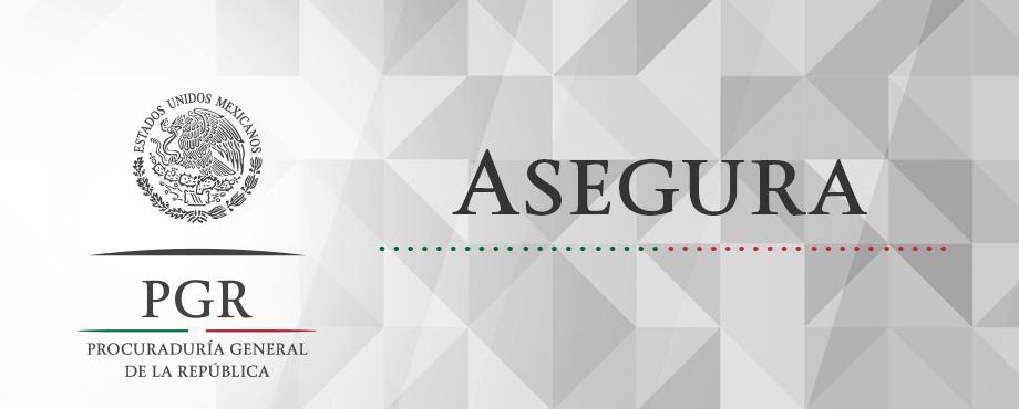 Asegura PGR semilla de amapola en Durango. Comunicado 870/15