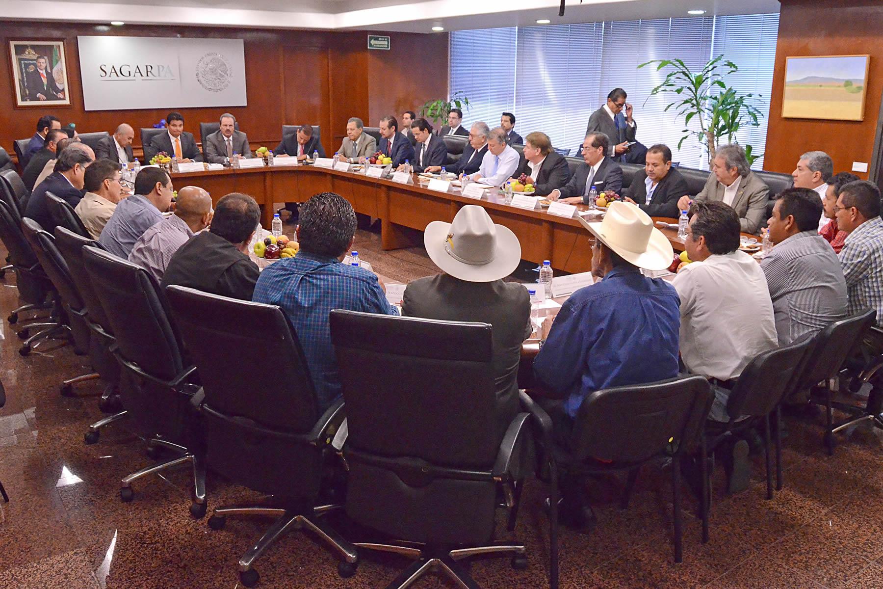 Buscan SAGARPA, gobierno de Sinaloa y productores dar certidumbre a comercialización de maíz.