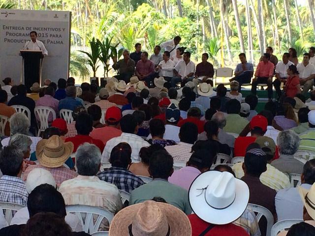 Presenta SAGARPA programa para impulsar cadena de valor del cocotero en Guerrero