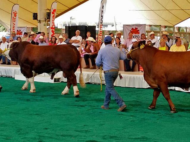 Inicia la CLXXXVII Expo Feria Nacional Ganadera y Agroalimentaria de San Marcos 2015.