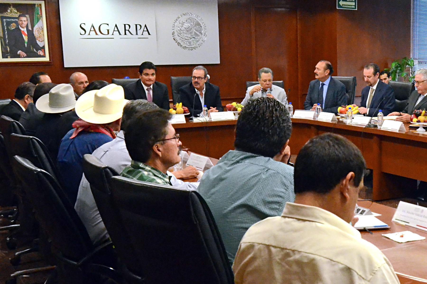Continúan reuniones de trabajo en la búsqueda de mayor certidumbre a la comercialización de maíz.