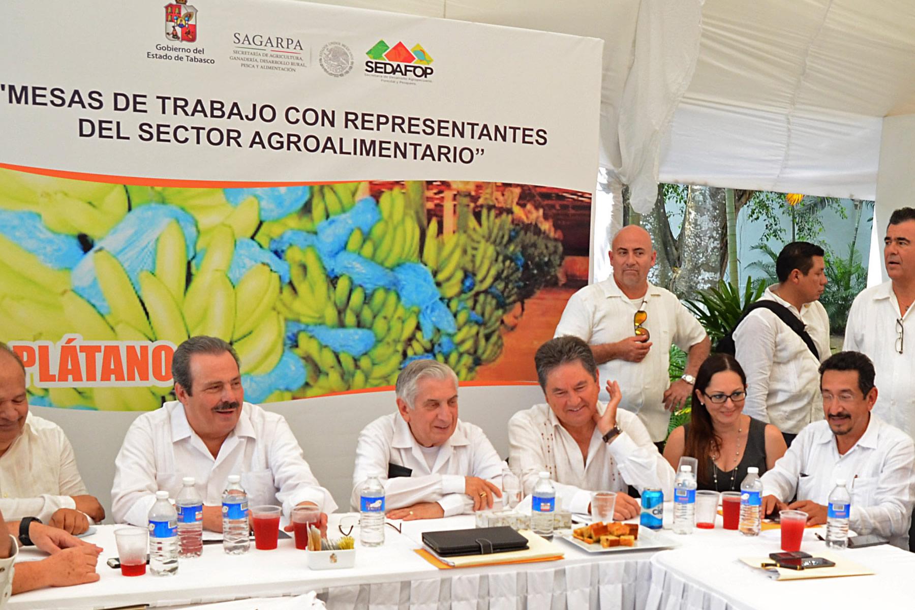 Realizan SAGARPA y gobierno de Tabasco mesas de trabajo con representantes del sector agroalimentario.