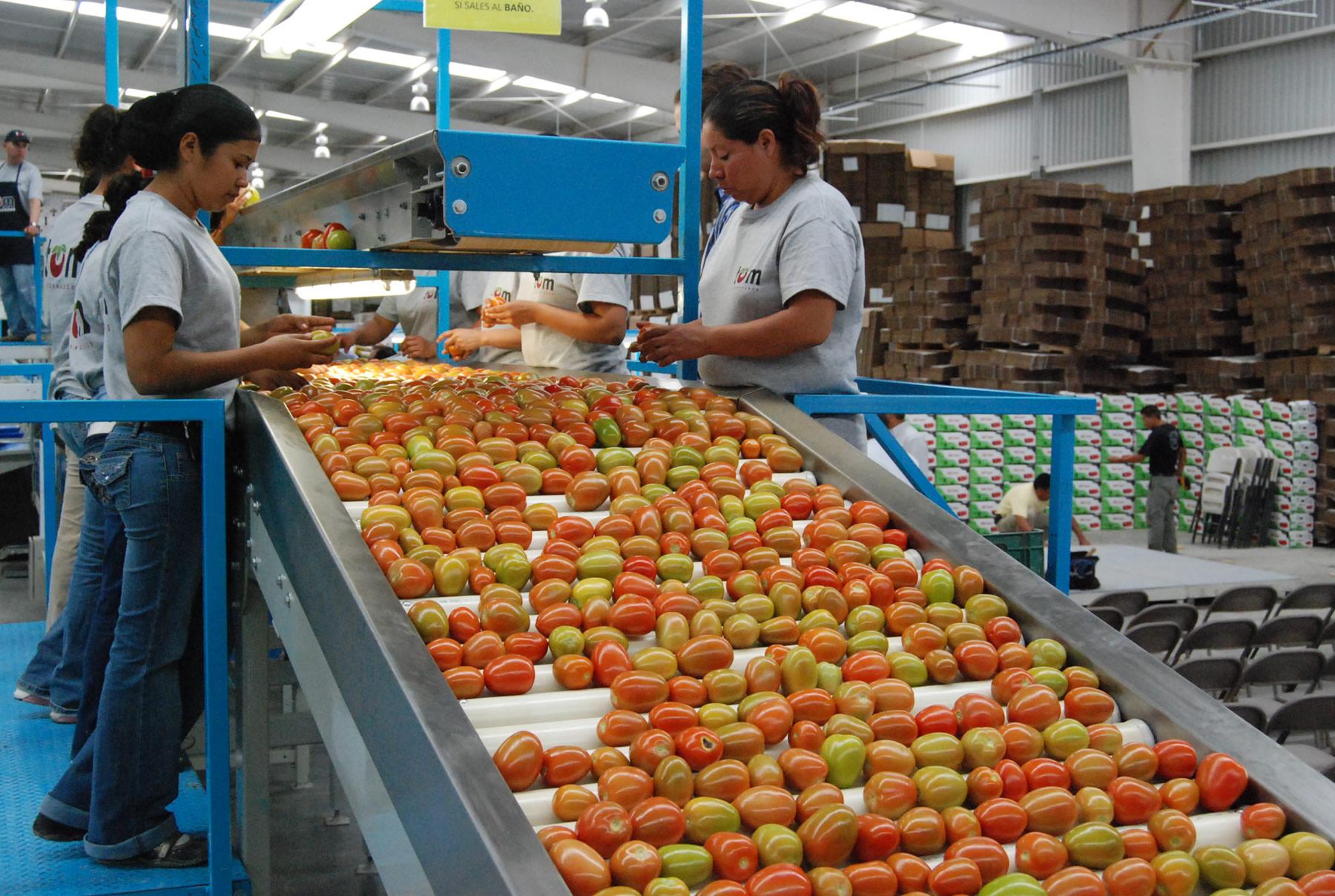 En el periodo enero – octubre 2015, la balanza comercial agroalimentaria presenta un superávit para México de 802.6 millones de dólares.