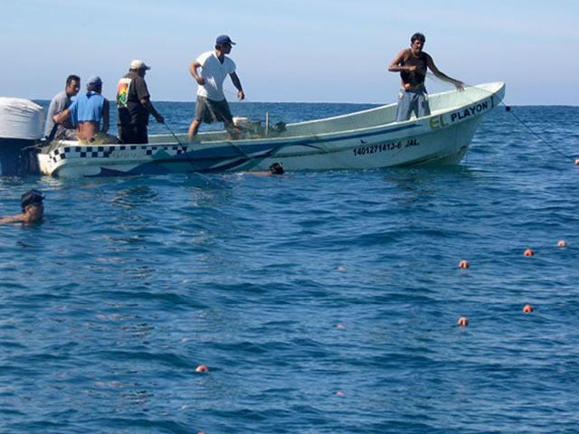 Destina SARGARPA mil 304 mdp para modernizar embarcaciones pesqueras