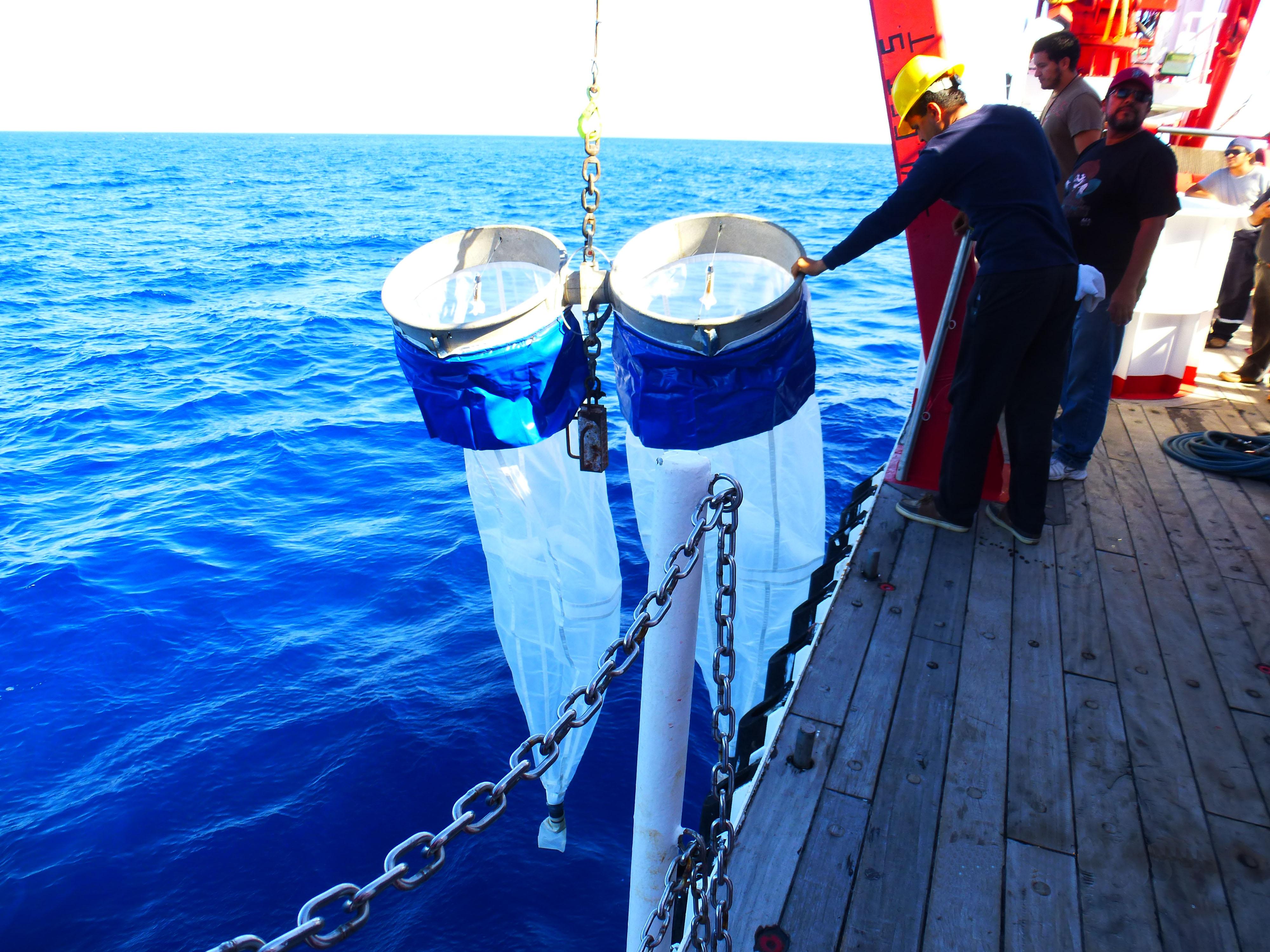 Después de concluir un crucero de investigación científica, el Buque de Investigación Pesquera y Oceanográfica del Instituto Nacional de Pesca (INAPESCA) ha arrojado los primeros resultados.