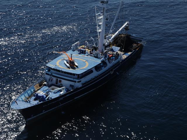 Anuncia titular de la SAGARPA inicio de temporada 2016 de captura de atún en el océano Pacífico.
