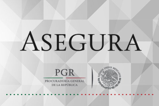Asegura PGR 17 máquinas denominadas tragamonedas en Tamaulipas