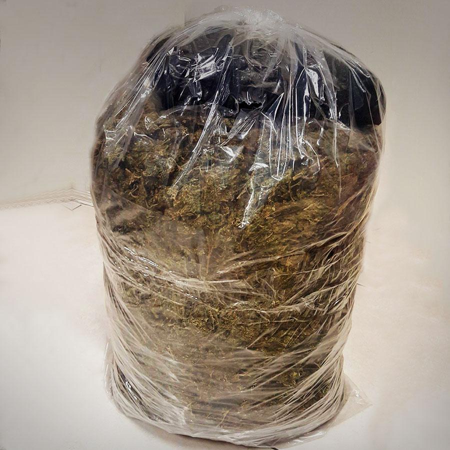 Consigna PGR a una persona con más de 8 kilos de marihuana.