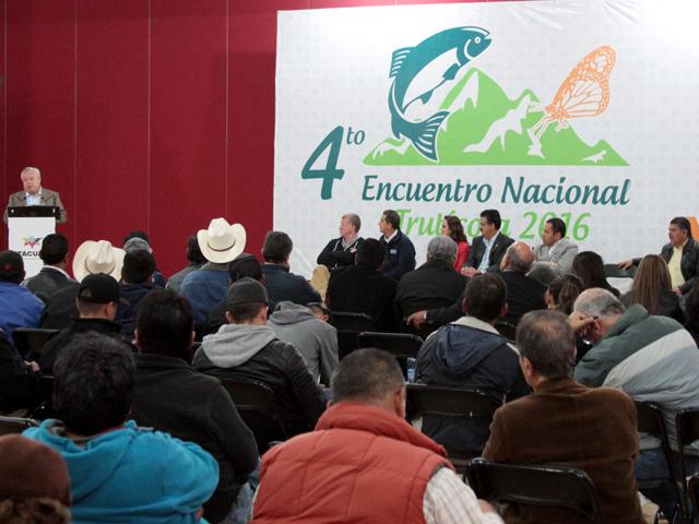 Impulsan actividad pesquera en Michoacán, estado líder en producción de trucha.