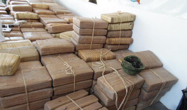 A disposición de PGR más de dos toneladas 157 kilos de marihuana asegurada en el municipio de Camargo.