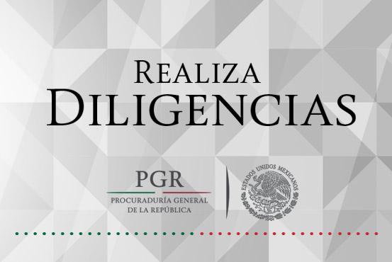 La delegación de la PGR en la Ciudad de México realizó cateo en las inmediaciones de Gustavo A. Madero