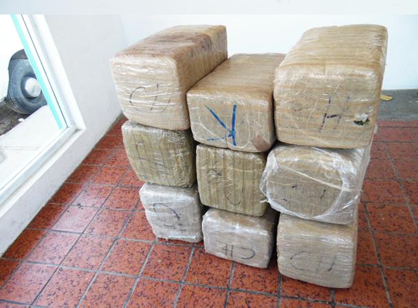 Asegura PGR más de 318 kilogramos de marihuana en Miguel Alemán y Matamoros