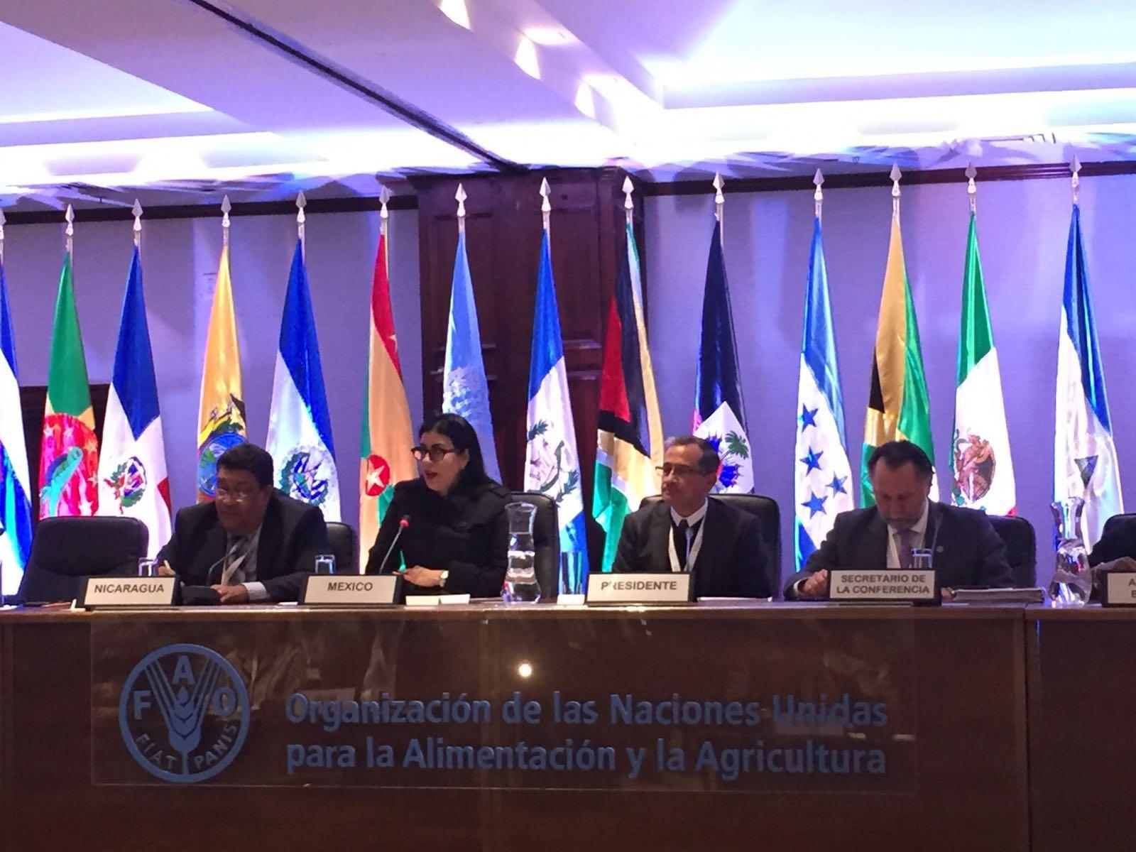 La subseceretaria Vanessa Rubio participó en la 34° edición del Periodo de Sesiones de la Conferencia Regional de la FAO